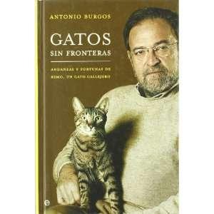 Gatos sin fronteras/ Cats without Borders Andanzas Y
