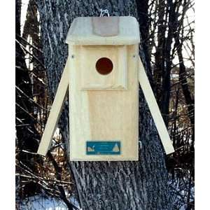 Observation Bluebird Bird House Nesting Box   Two Sides