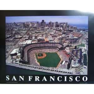 San Francisco Giants Team Pride PhotoMint Sports