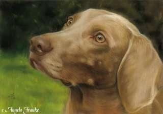 Original Pastel painting Weimaraner dog Pastell Zeichnung Tier Hund