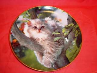 Porcelain Gallery Nancy Matthews Cat Plate G6945