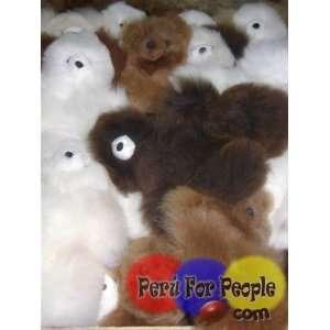 Lot of 10   Peruvian Baby Alpaca Teddy Bears 9