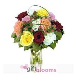 12 Mixed Designer Long Stem Roses  Grocery & Gourmet Food