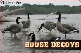 DAKOA CANADA GOOSE DECOYS + NEW 4 PACK OF CANADA GEESE |