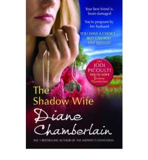 The Shadow Wife by Diane Chamberlain 9781848450424