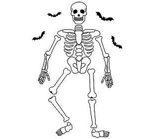 Halloween Skeleton Giant Wall Decals   QVC