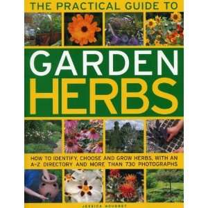 Guide to Garden Herbs: How to identify, choose and grow herbs
