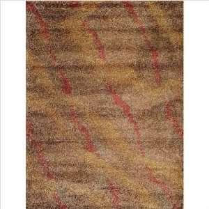 Wild Shaggy Mocha Mountain Range Shag Rug Size 5 5 x 7