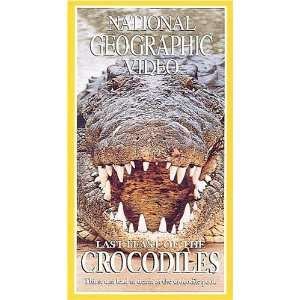 Last Feast of e Crocodiles [VHS] National Geographic Movies & TV