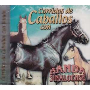 Corridos De Cabaloos Con Banda Sinaloense Banda Sinaloense Music