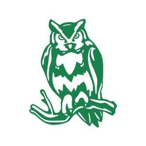 Owl Large 10 Tall GREEN vinyl window decal sticker