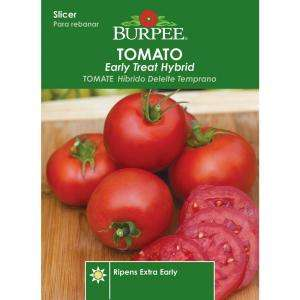 Burpee Tomato Early Treat Hybrid Seed 64658