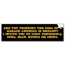 Thinking the idea of a Barack Amer   Customized Bumper Sticker by