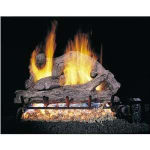 Vented Propane Gas Log Set W/ G4 Burner And Variable Flame Remote